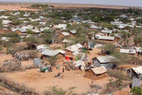 Dadaab camp